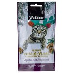 Webbox Christmas Cat Yum-e-Yums Cranberry Flavour