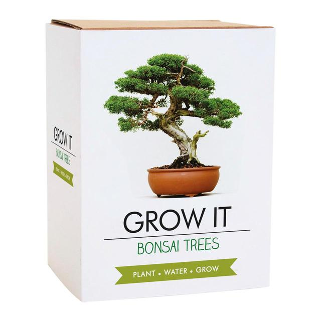 Grow Your Own Bonsai Trees 5 Per Pack From Ocado