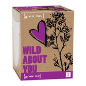 Grow Your Own Wild Flowers
