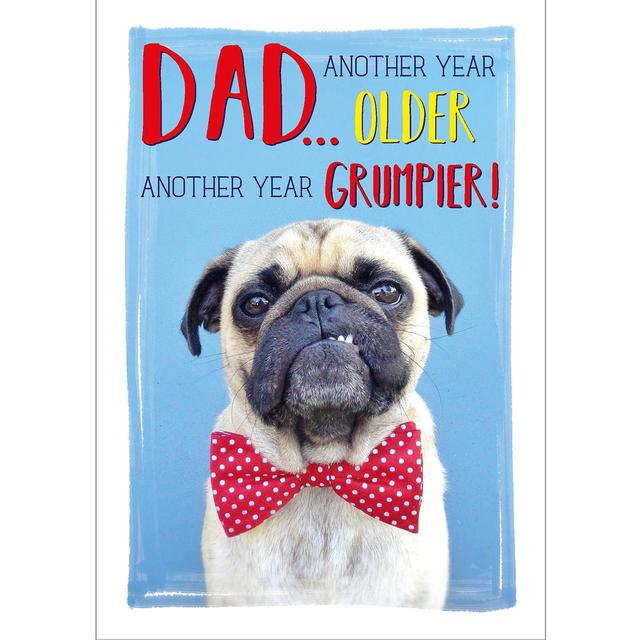 Grumpy Dog Birthday Card From Ocado