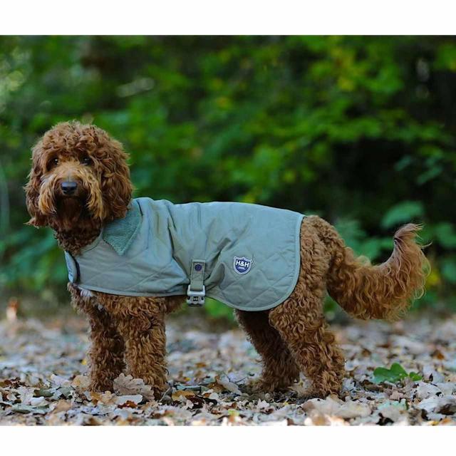 HUGO /& HUDSON LUXURY QUILTED DOG JACKET OLIVE GREEN Sizes Xsmall to Xlarge