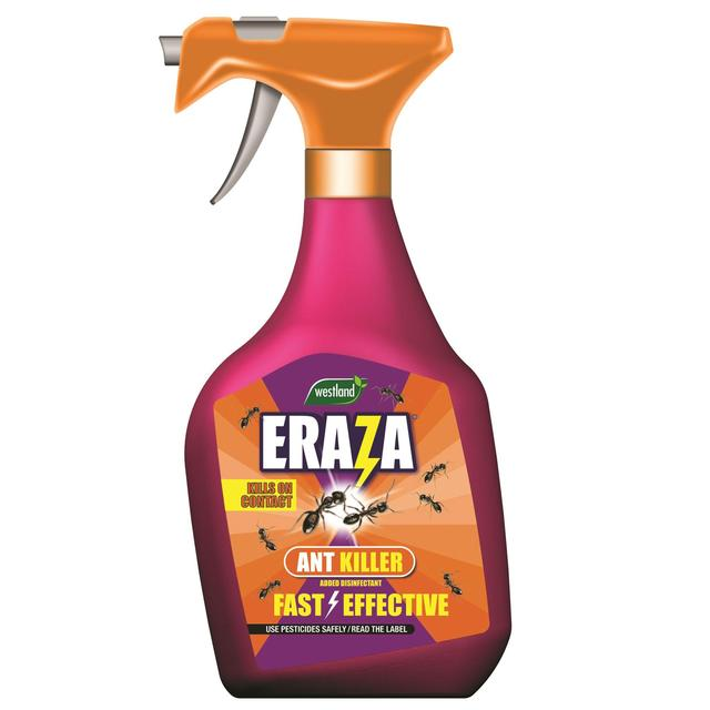 Eraza Ant Killer Ready To Use Spray, 750ml