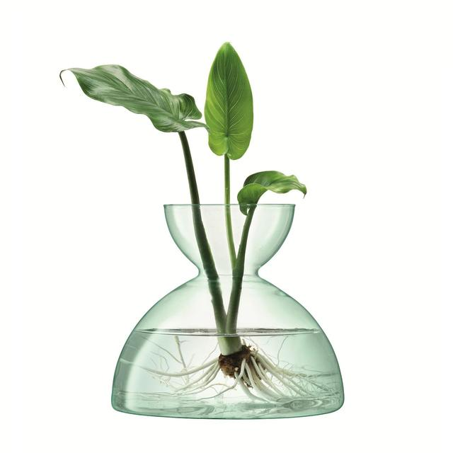 LSA International Canopy Vase 18cm, Clear