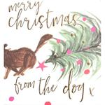 Caroline Gardner From The Dog Christmas Card