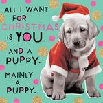 Puppy Christmas Card