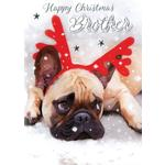 Brother Bulldog Christmas Card