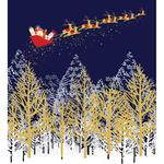 Santa Charity Pack of Christmas Cards