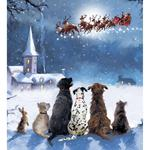 Magical Time Charity Pack of Christmas Cards