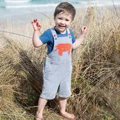 Frugi Organic Summer Dungaree with Crab Embroidery