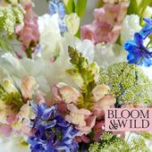 Bloom & Wild at home The Summer Gladioli