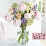 Bloom & Wild at home The Summer Peonies