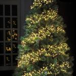 480 LED Cluster Christmas Tree Lights, Warm White