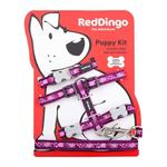 Red Dingo Breezy Love Puppy Pack