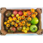 Isle of Wight Ultimate Tomato Pack