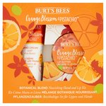Burt's Bees Hand and Lip Kit, Orange Blossom & Pistachio