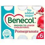 Benecol Cholesterol Lowering Pomegranate Yogurt Drink