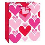 Red & Pink Hearts Medium Gift Big
