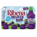 Ribena Minis No Added Sugar Blackcurrant