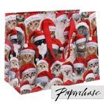 Paperchase Festive Cats Medium Gift Bag