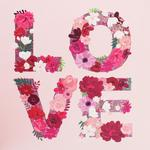 Flowers Love Valentine's Day Card