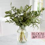 Bloom & Wild At Home The Scented Foliage