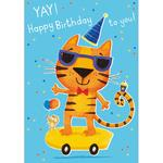 Skateboard Cat Birthday Card