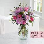 Bloom & Wild At Home The Fragrant Freesia