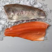 Waitrose English Rainbow Trout Fillet