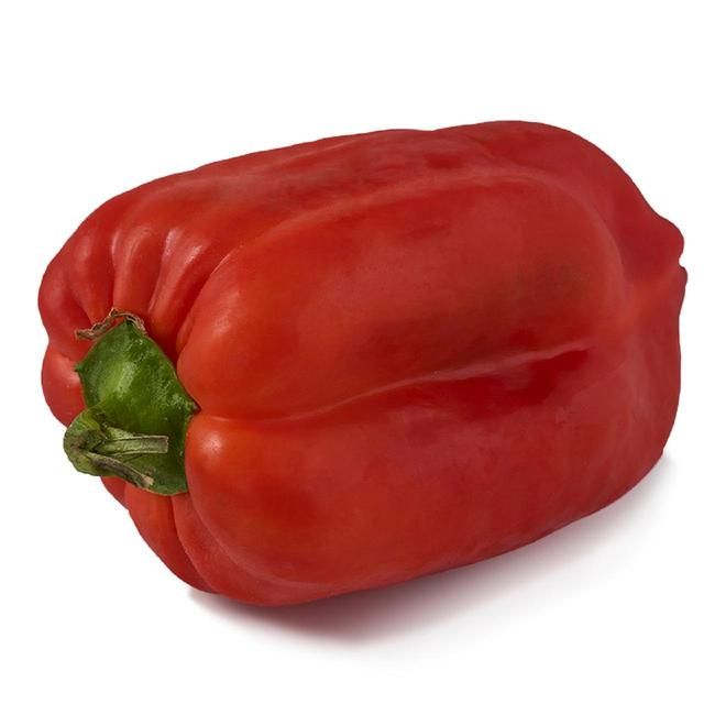 Natoora 1 Giant Red & Green Pepper