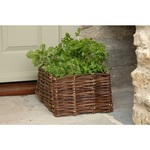 Burgon & Ball Willow Herb Planter