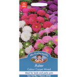 Mr Fothergill's Seeds - Aster Colour Carpet Mixed