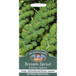 Mr Fothergill's Seeds - Brussels Sprout Evesham Special