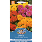Mr Fothergill's Seeds - Dahlia - Dwarf Double Mixed
