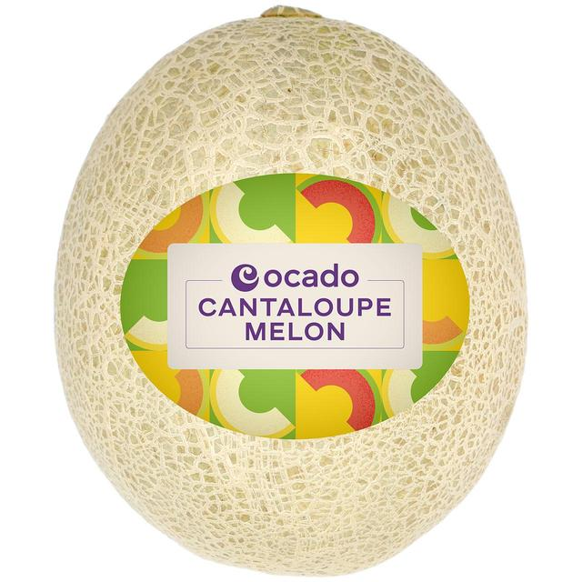 Cantaloupe Cantelope / What are random facts about freddie mercury?