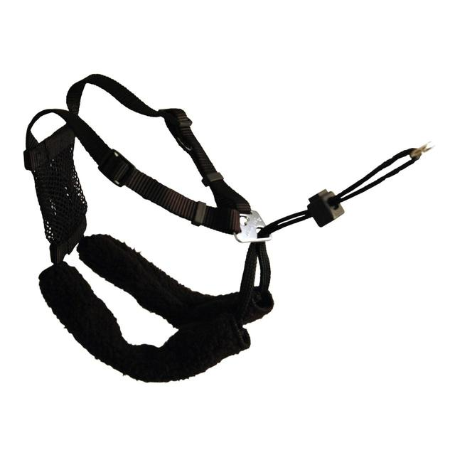 Company of Animals Non-Pull Black Dog Harness Large