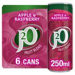J2O Apple & Raspberry Fridge Pack