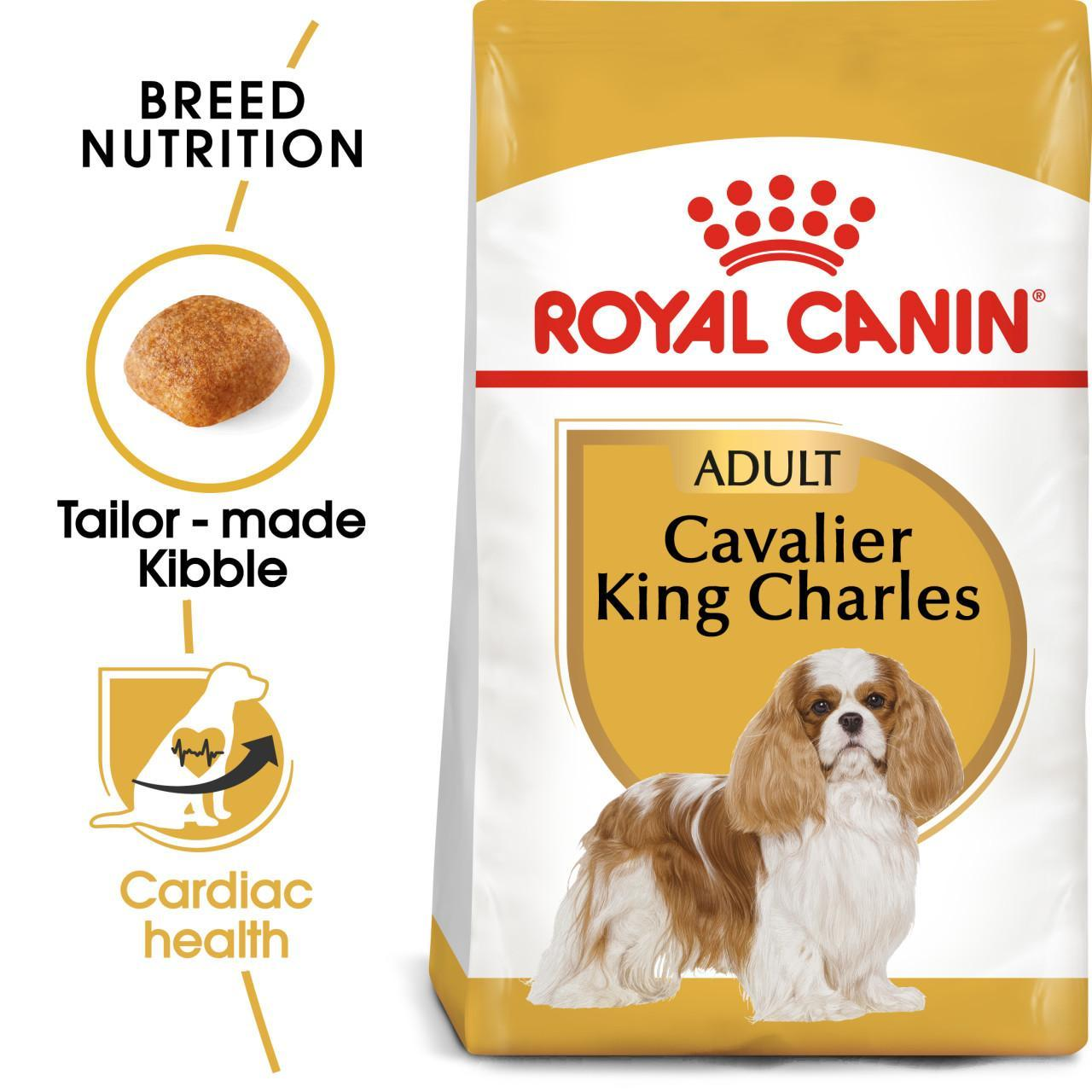 An image of Royal Canin Cavalier King Charles Spaniel