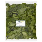 Watts Farms Spinach