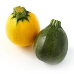 Natoora French Round Courgettes