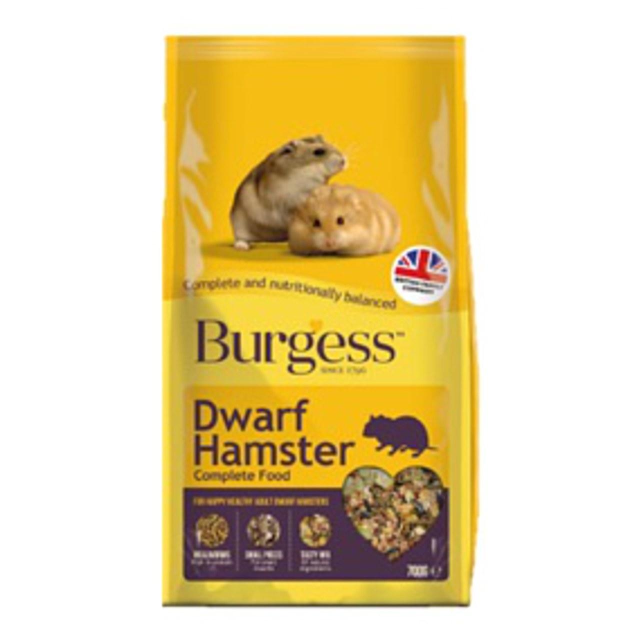 Adult dwarf hamster nudes scene